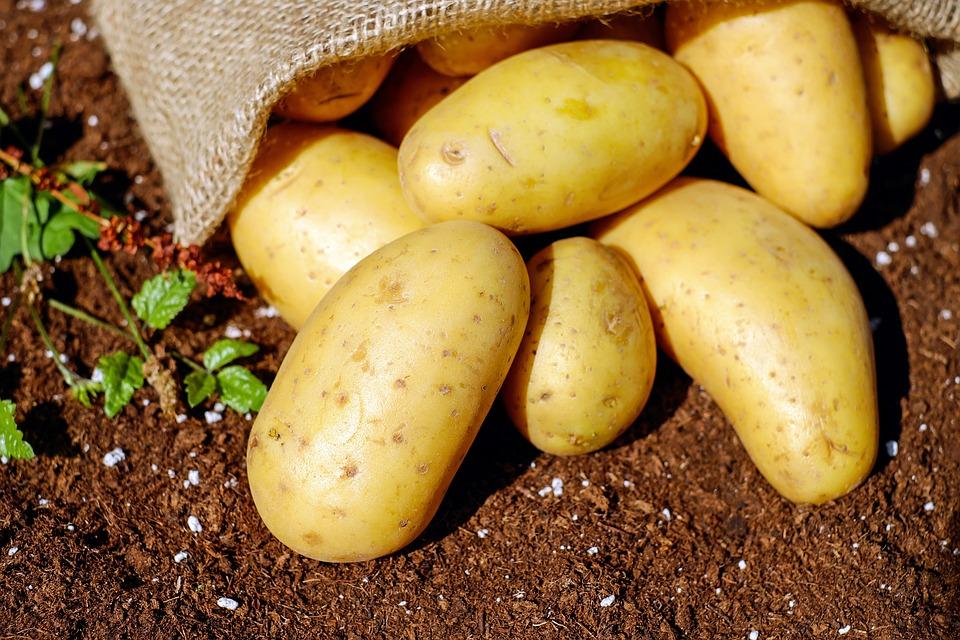 Er gaan 2 kilo aardappels in 1 kilo frites: waar blijft de rest?