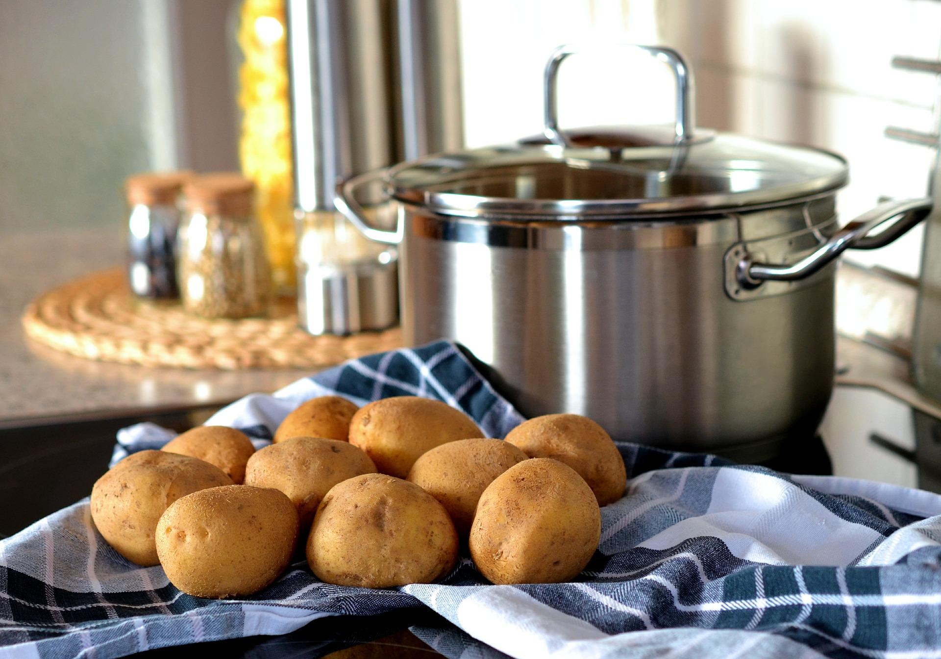 Onderzoek naar efficiëntere aardappeloogst moet voedselverspilling tegen gaan