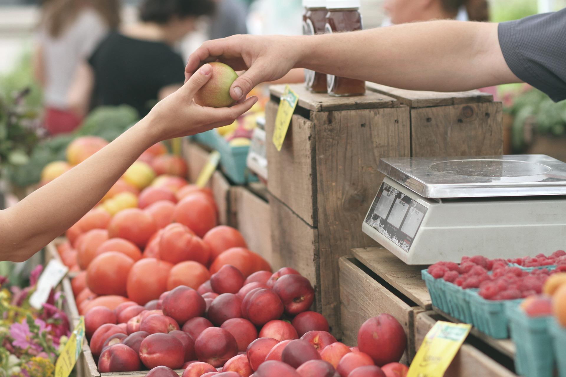 Fruitteler zit met vijftigduizend kilo onverkoopbaar fruit