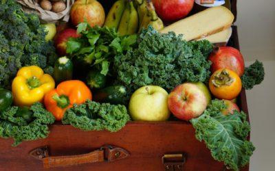 REPORT: Hoe overheden, bedrijven en consumenten kunnen bijdragen aan een duurzaam voedselsysteem