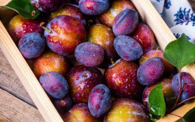 Oplossing tegen voedselverspilling in fruitcontainers wint Startup Funding Event 2019
