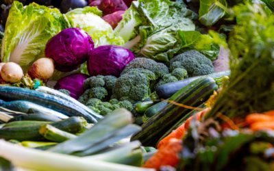British research about tackling food waste in supermarkets