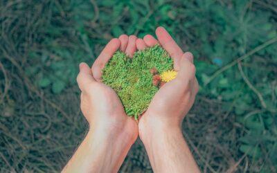 5 juni | World Environment Day