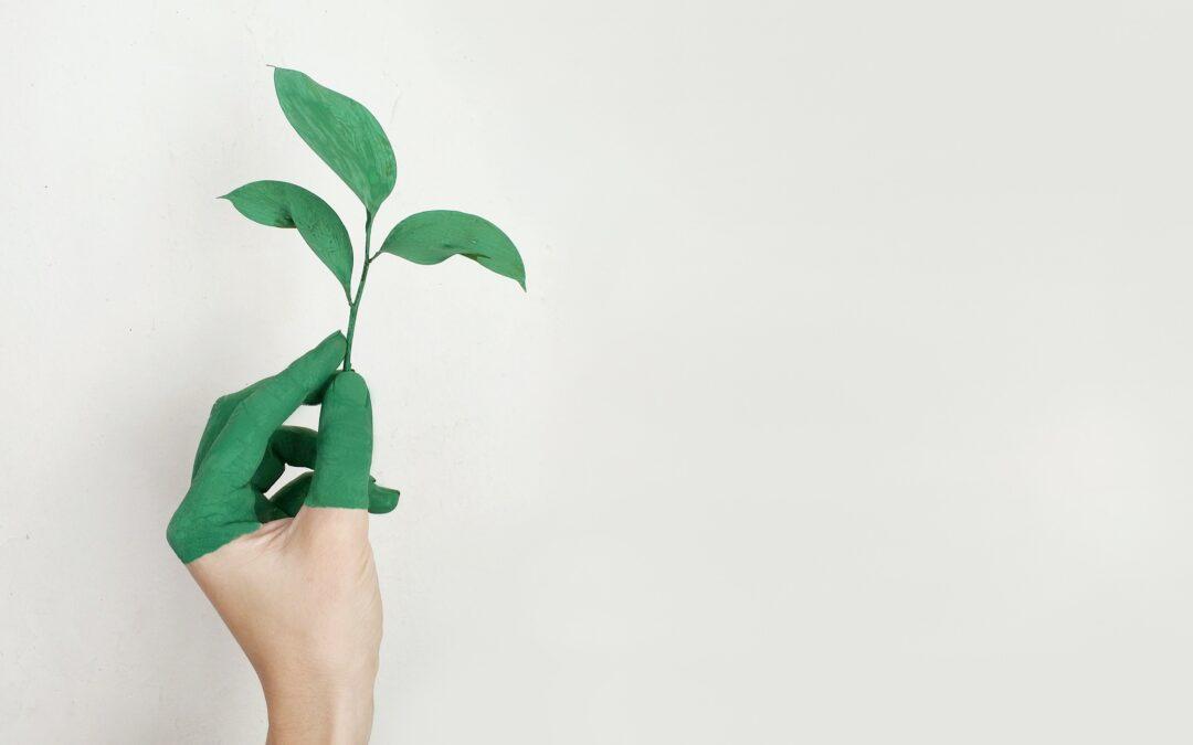 Groene toekomst