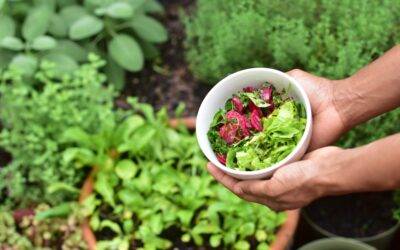 Spaarne Gasthuis vermindert voedselverspilling