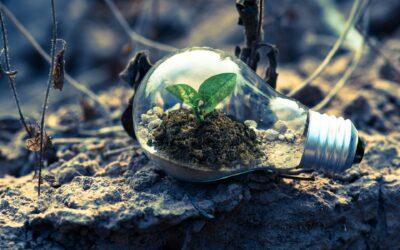 De Earthshot Prize: No waste vormt een belangrijk onderdeel van de meest ambitieuze milieudoelstellingen in de geschiedenis