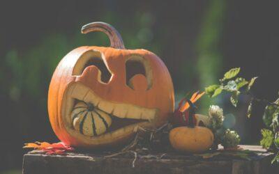 12,8 miljoen verspilde pompoenen: de enge waarheid over Halloween